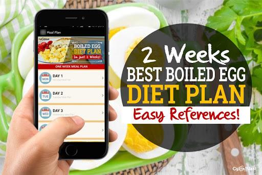 Best Boiled Egg Diet Plan 1.3 screenshots 2