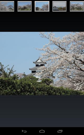 玩免費旅遊APP|下載福島県 白河小峰城と桜(JP174) app不用錢|硬是要APP