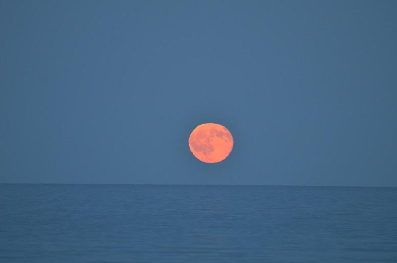 Bentornata Luna di Fotodilucio