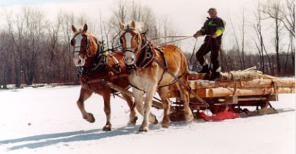 Photo: In February 1995 I arranged for a local farmer to haul the logs across the ice with a team of horses. It was quite the event with almost 20 helpers and on-lookers.