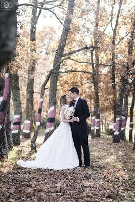 Fotógrafo de bodas Ewa Kowalik (EwaKowalik). Foto del 11.01.2017