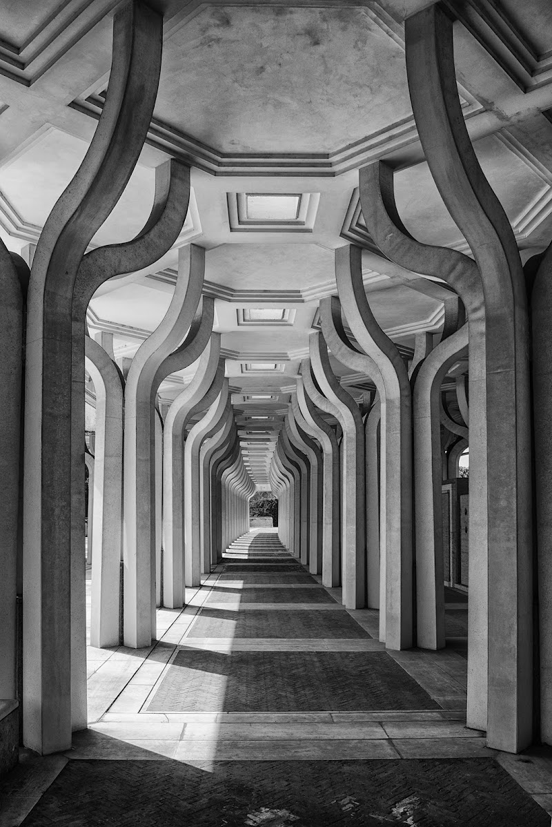 Moschea di Roma di Domenico Cippitelli