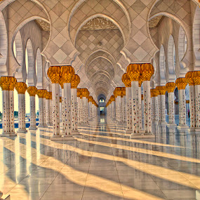 Abu Dhabi Grand Mosque - UAE by Lan Saflor - Buildings & Architecture Other Exteriors