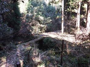 丸太橋を渡り林道終点に