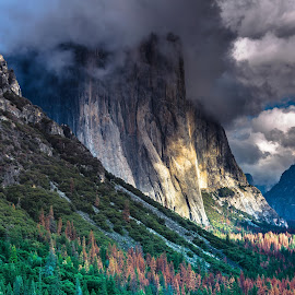 El Capitan in Yosemite  by Arif Sarıyıldız - Landscapes Mountains & Hills ( california, el capitan, yosemite national park, usa, travel photography, granite )