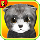 Homeless Cat Care Virtual Pet