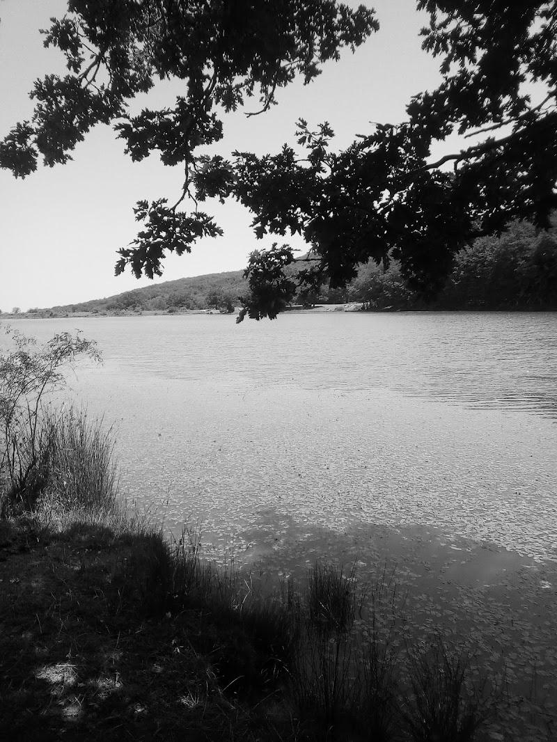 Lago  di Taguali89
