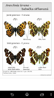 Screenshot of Atlas of Czech Butterflies