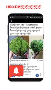 Ors Cha News - náhled