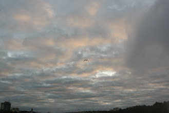 Photo: Part IV for the sky.