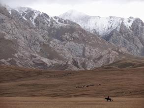 Photo: Legelő a Szong-köl mellett, Szong-köl, Song-kol, szürt, fennsík, Kirgíz legelő