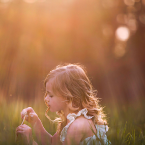 Day Dreamer by Tiona Anglin Appel - Babies & Children Child Portraits ( field, girl, grass, sunset, portrait )