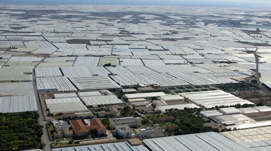 El invernadero, campo solar que reducirá el consumo energético