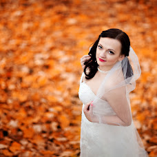 Wedding photographer Oksana Stab (OksanaStab). Photo of 07.11.2016