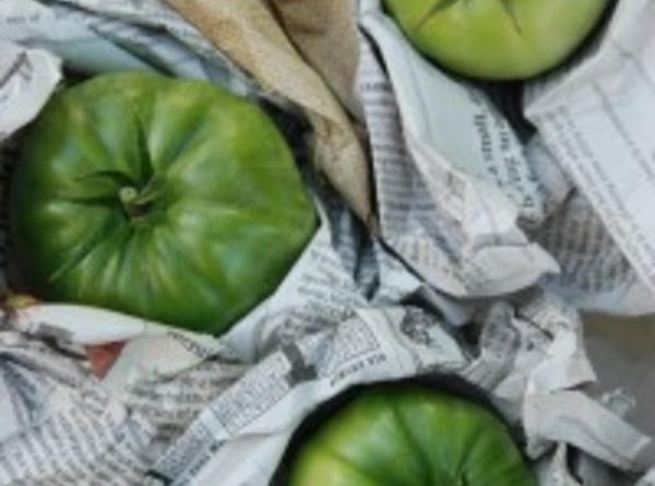 Carefully wrap each tomato completely in a piece of paper or newspaper to protect...