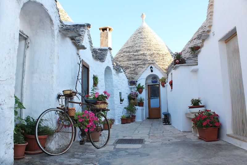 AlberoBello - Puglia di domenico militello photography
