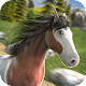 Cowboys Horse Racing Field (game)