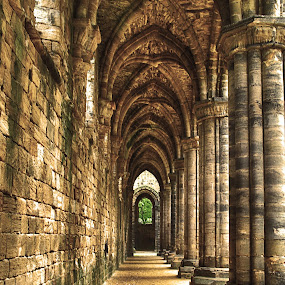 At the Kirkstall Abbey, Leeds by Havneet Singh - Buildings & Architecture Public & Historical (  )