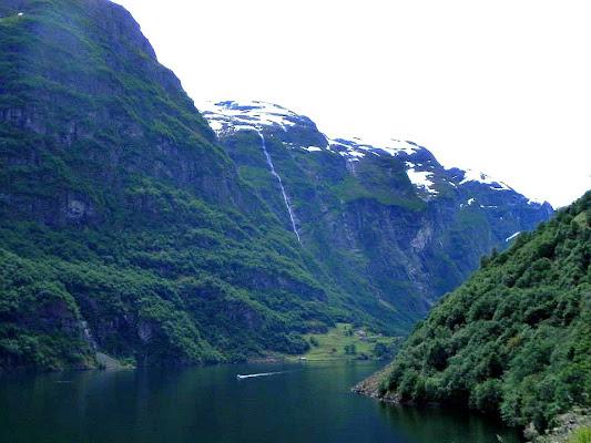 Norvegia di ciucco