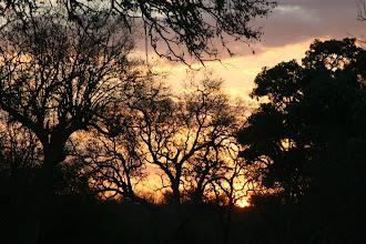 Photo: Kruger National Park. Tsendze Rustic Campsite