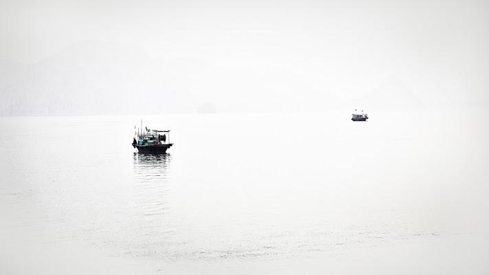 Les bateaux sur la mer di Montevecchi