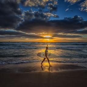 The Surfer by Assi Dvilanski - Landscapes Sunsets & Sunrises ( surfing, sunset, beautiful, sea, beach, seascape, sunlight, surf, sun )