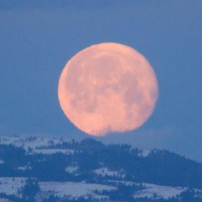Moon setting  by Kathlene Moore - Landscapes Deserts (  )