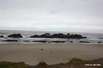 Photo: (Year 2) Day 351 - Fabulous Beach on the Way to Yachats