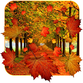 Fall Live Wallpaper Android APK Download Free By App Basic