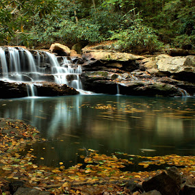 Fall at the Falls by Kevin Frick - Landscapes Waterscapes ( autumn, west virginia, fall, waterfall, leaves )