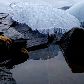 Icy Reflections by Sandra Updyke - Nature Up Close Other Natural Objects ( january, ice, icicles, reflections, lake superior )