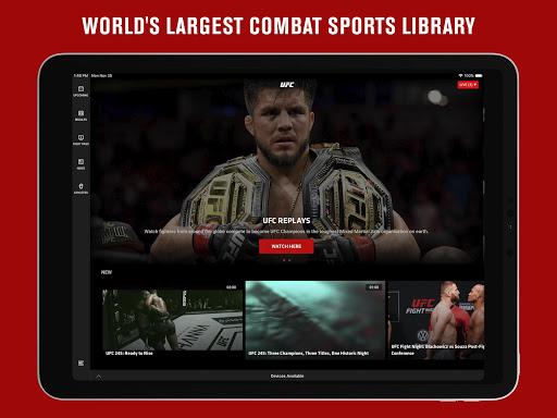 UFC screenshot 9