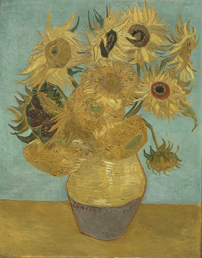 Virtual Sunflower 360 Gallery