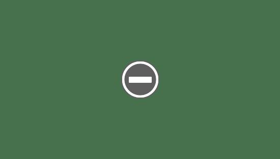 Contenido de BRIO® 33825 Furgoneta de Policía