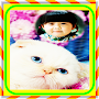 Kitty Cat Cute Photo Frames APK icon