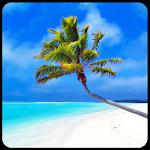 Maldives 3D LWP, True Weather Icon