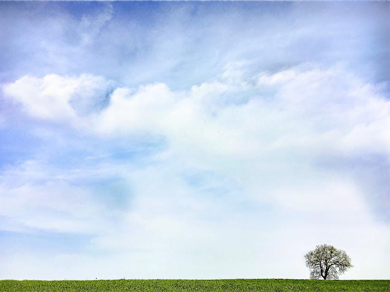Panorama minimal di D. Costantini