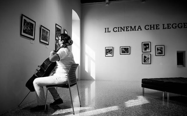 Solista!  di Matteo Faliero