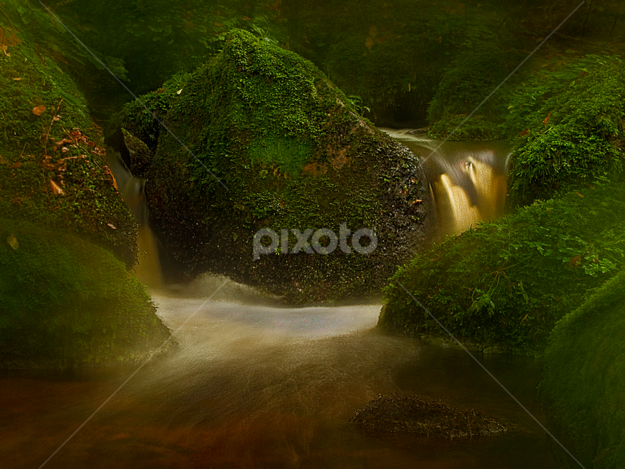 Moss on stones by Peter Samuelsson - Landscapes Waterscapes