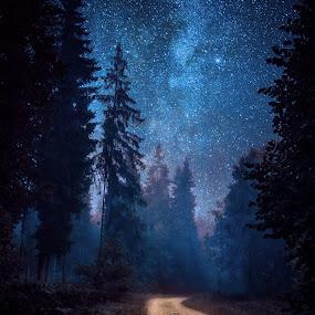 by Hendrik Mändla - Landscapes Starscapes