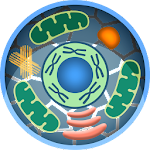 Cell World Icon