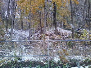 Photo: A dusting of snow in early November