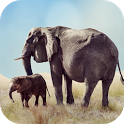Elephant Sounds icon