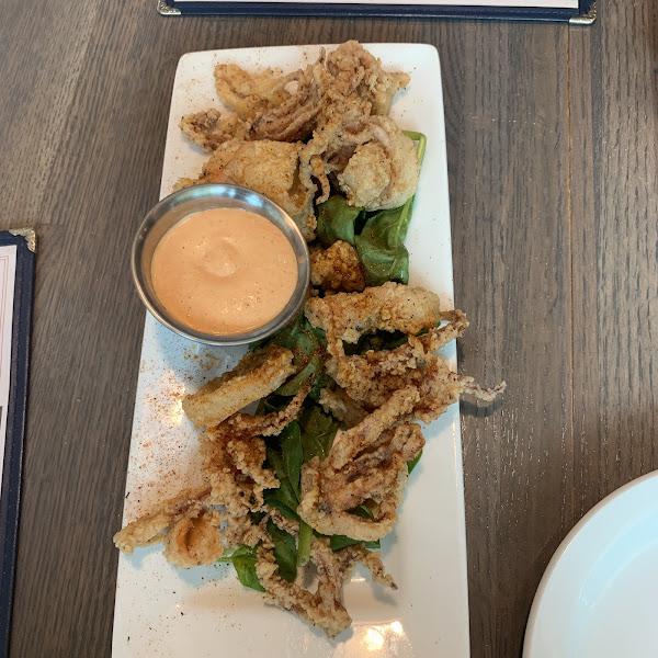 Fried calamari