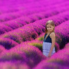 Lavender bliss by Love Time - Digital Art People (  )