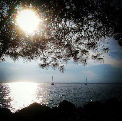 Trieste di babi72