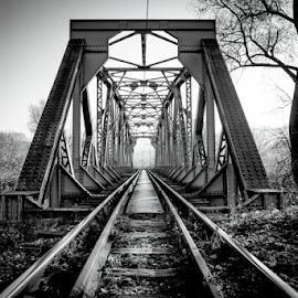 Old iron bridge by Biljana Nikolic - Black & White Buildings & Architecture