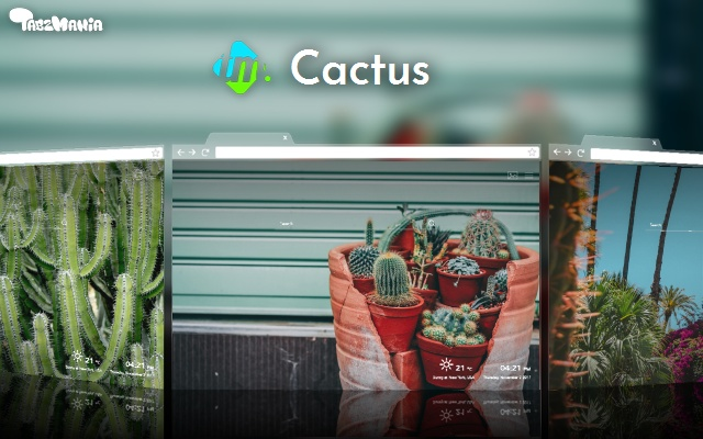 Cactus Plants Wallpapers New Tab