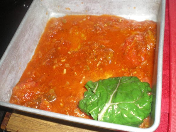 Place on sauce in baking dish.