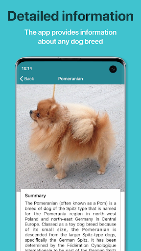 Dog Scanner – Dog Breed Identification screenshot 6